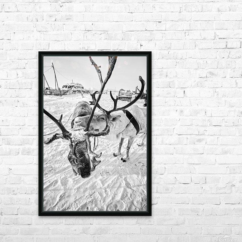 Evenki Reindeer Herding HD Sublimation Metal print with Decorating Float Frame (BOX)