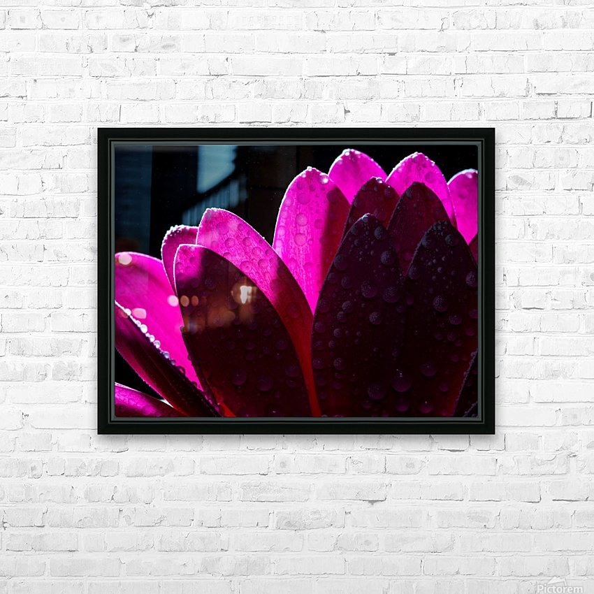 In The Light HD Sublimation Metal print with Decorating Float Frame (BOX)