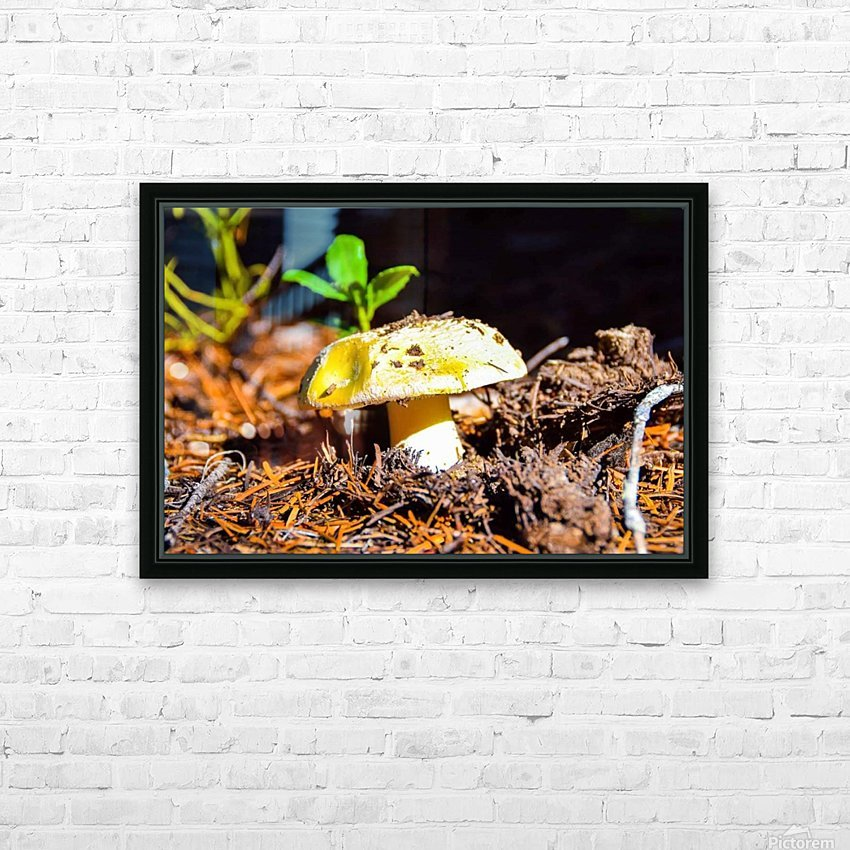 FB_IMG_1551063477421 HD Sublimation Metal print with Decorating Float Frame (BOX)