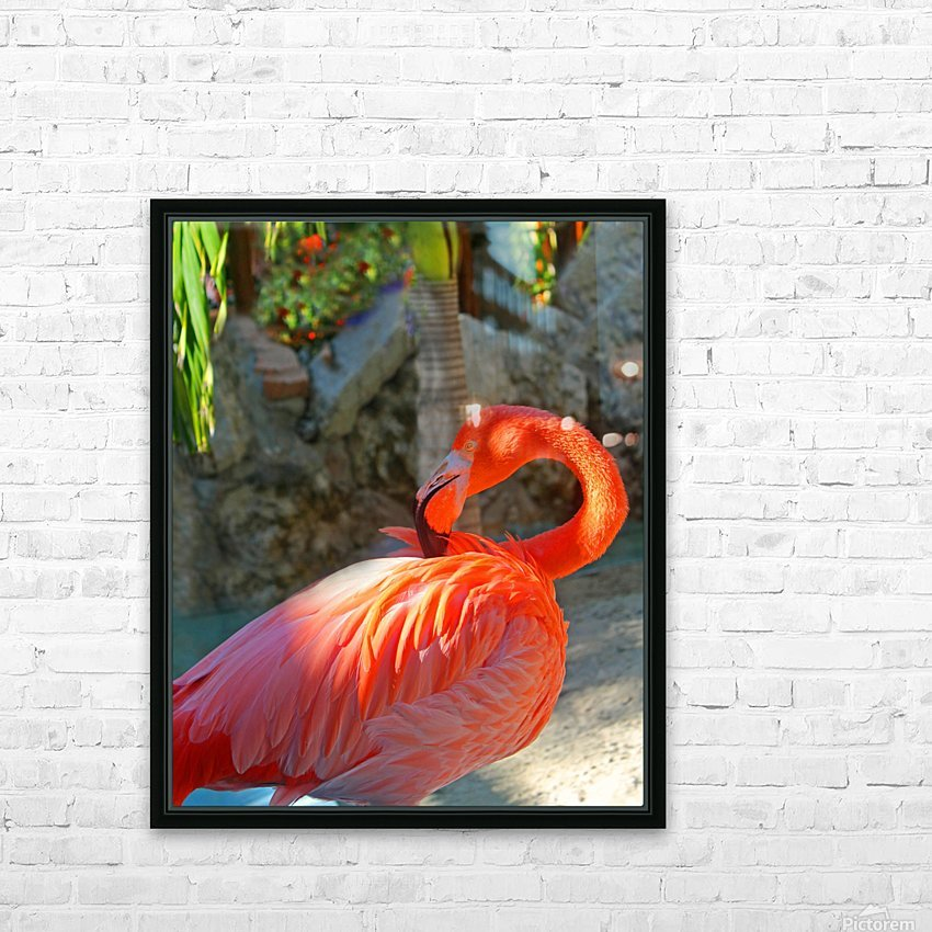 Enjoying the Sun HD Sublimation Metal print with Decorating Float Frame (BOX)