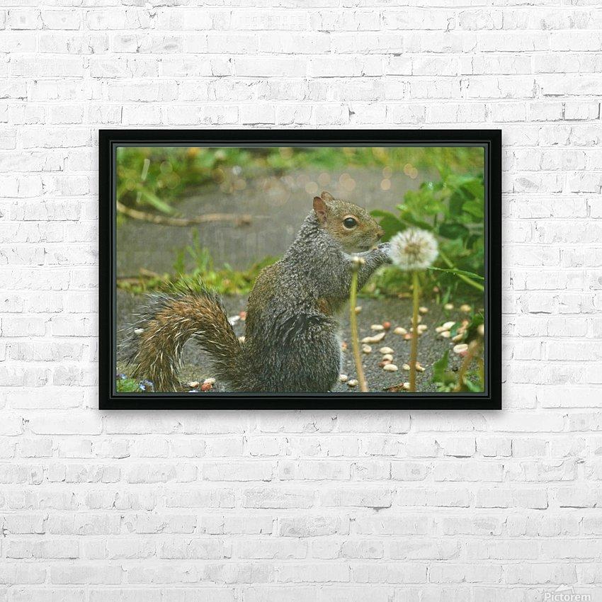 Squirrel paw warming HD sublimation métal imprimé avec décoration flotteur cadre (boîte)