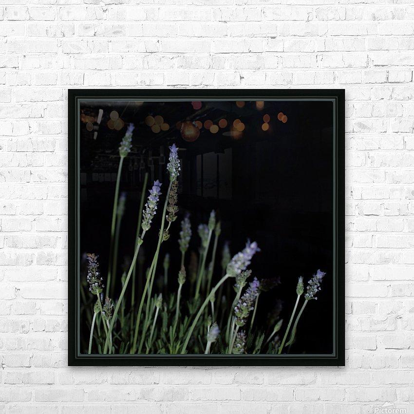 plant flower lavender black background HD Sublimation Metal print with Decorating Float Frame (BOX)