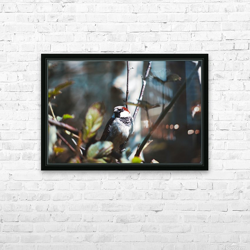 DSC_1735 HD Sublimation Metal print with Decorating Float Frame (BOX)