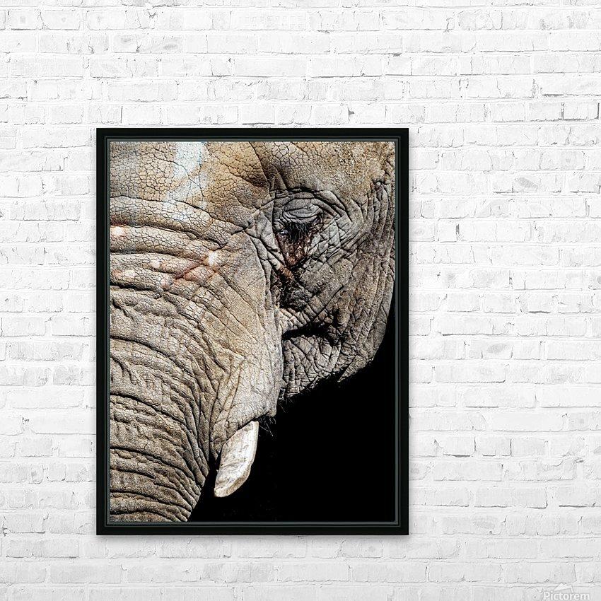 Elephant Close Up HD sublimation métal imprimé avec décoration flotteur cadre (boîte)