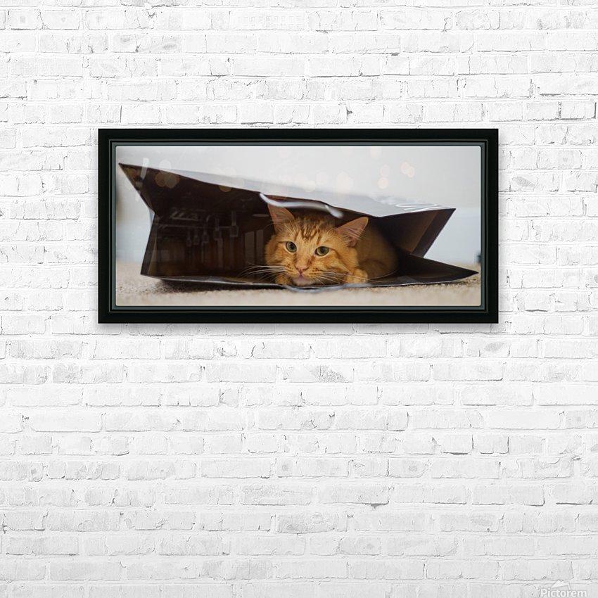 Cat In The Bag HD sublimation métal imprimé avec décoration flotteur cadre (boîte)