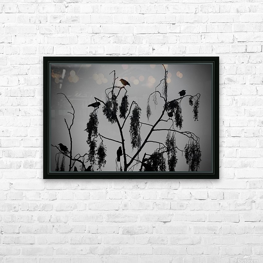 Crows 2016   1 HD Sublimation Metal print with Decorating Float Frame (BOX)