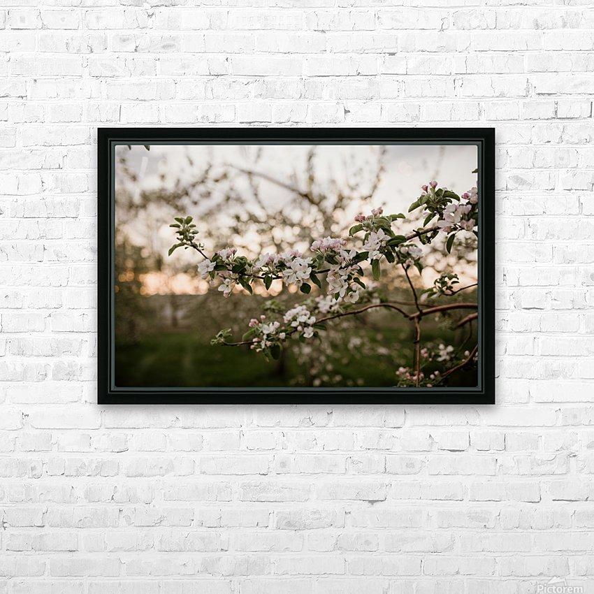 Fleurs de pommes HD sublimation métal imprimé avec décoration flotteur cadre (boîte)