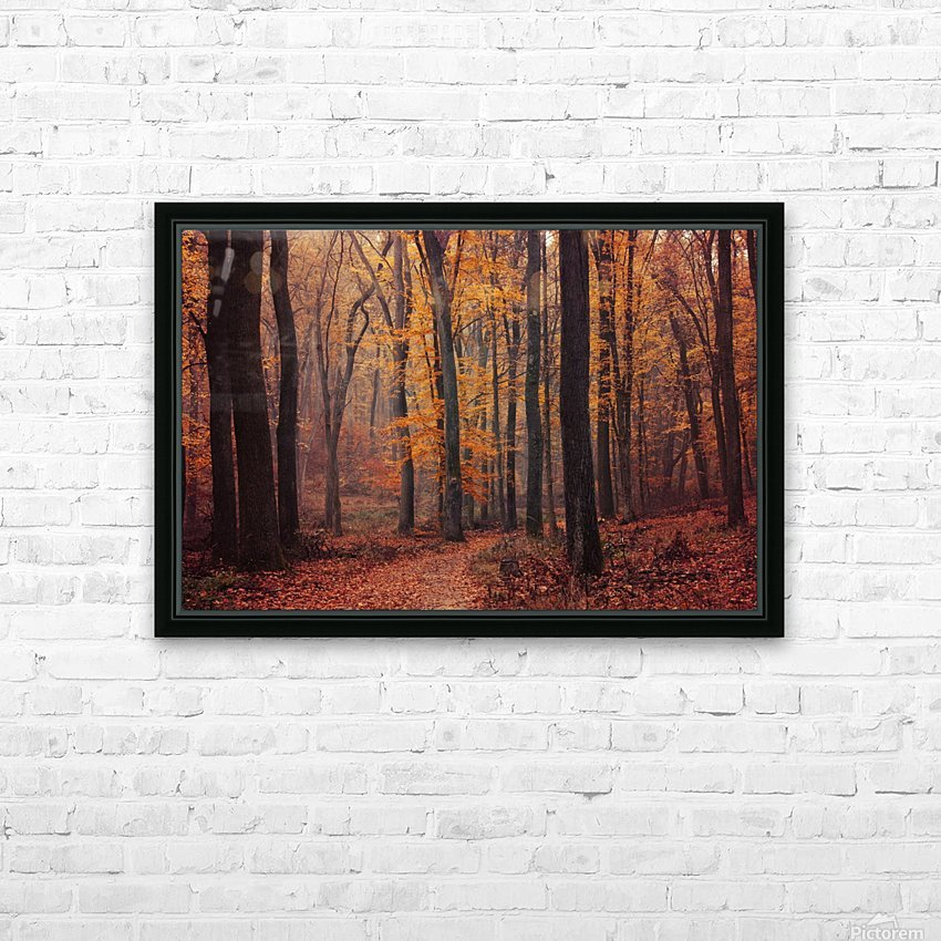 Fall Impressions VIII. HD Sublimation Metal print with Decorating Float Frame (BOX)
