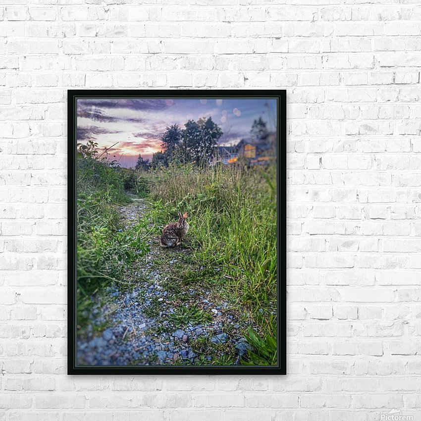 Sunset bunny HD Sublimation Metal print with Decorating Float Frame (BOX)