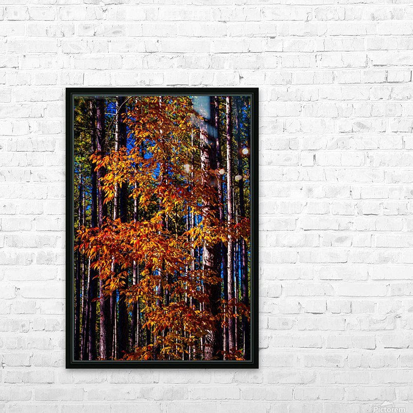 Autumn Fire HD Sublimation Metal print with Decorating Float Frame (BOX)