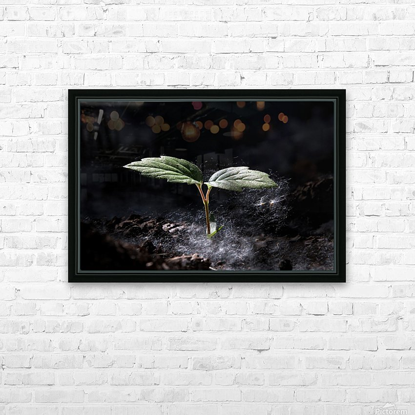 Young Sapling HD Sublimation Metal print with Decorating Float Frame (BOX)