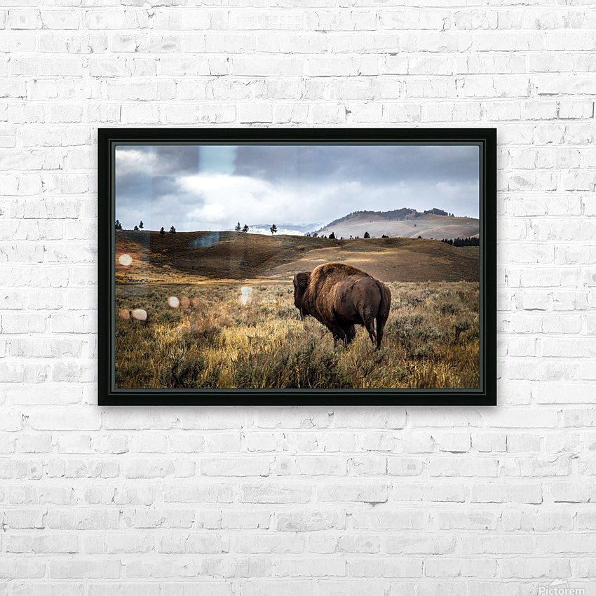 Stormy Bison HD Sublimation Metal print with Decorating Float Frame (BOX)