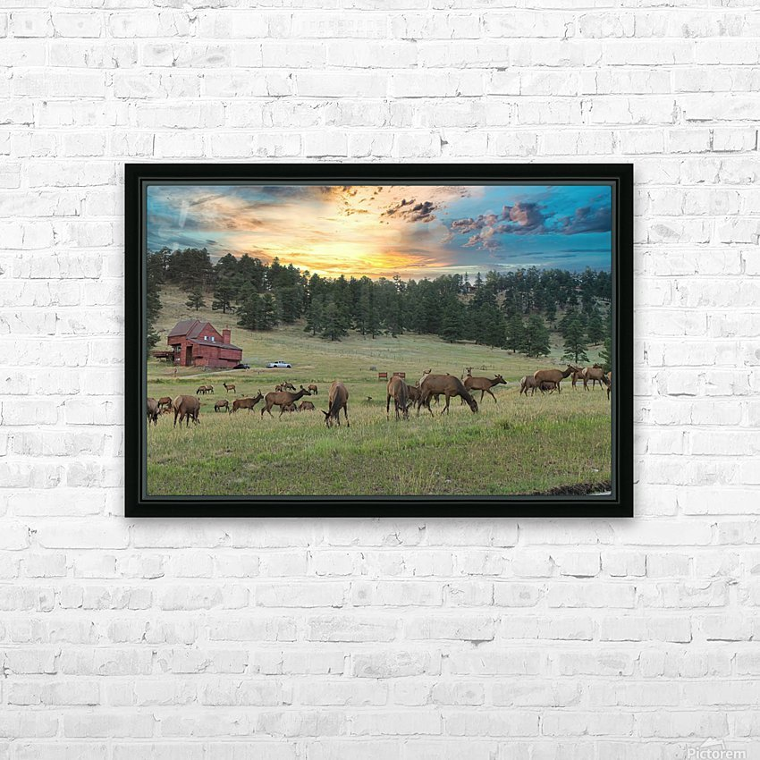 Colorado Elk HD Sublimation Metal print with Decorating Float Frame (BOX)