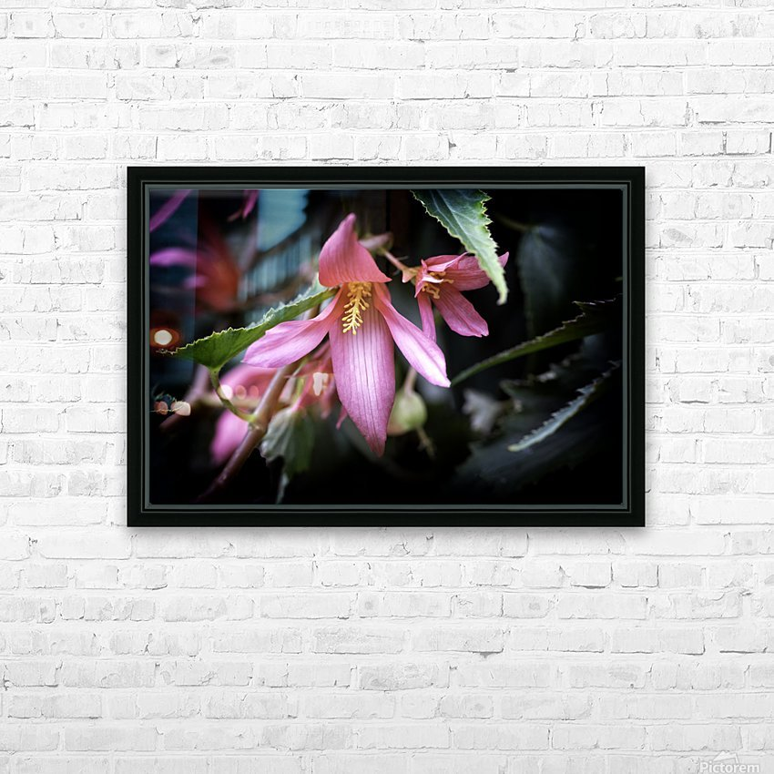 Begonia  HD Sublimation Metal print with Decorating Float Frame (BOX)