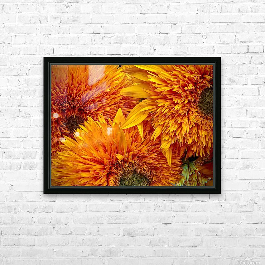 Fluffy Yellow Sunflowers HD Sublimation Metal print with Decorating Float Frame (BOX)