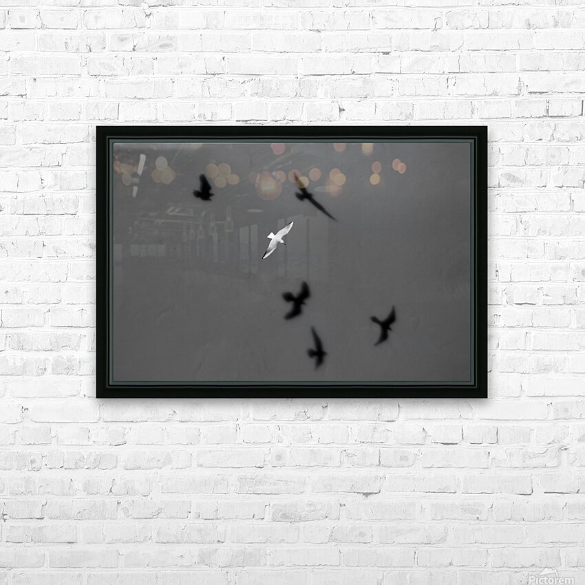 Bird and Shadows HD Sublimation Metal print with Decorating Float Frame (BOX)