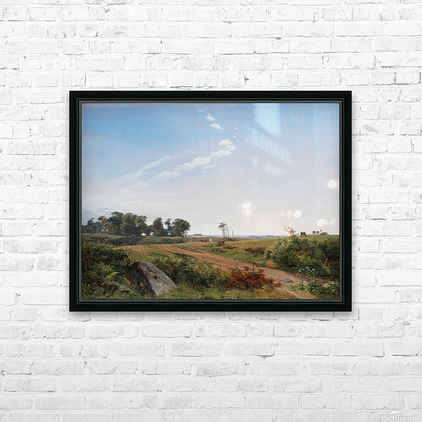 Zealand Landscape. Open Country in North Zealand HD Sublimation Metal print with Decorating Float Frame (BOX)