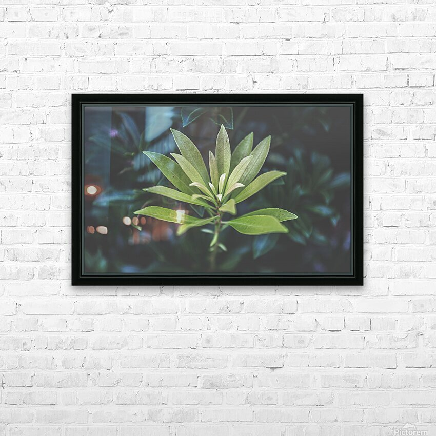 Bamboo shoots HD Sublimation Metal print with Decorating Float Frame (BOX)