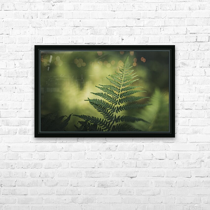 Green as the fern  HD Sublimation Metal print with Decorating Float Frame (BOX)