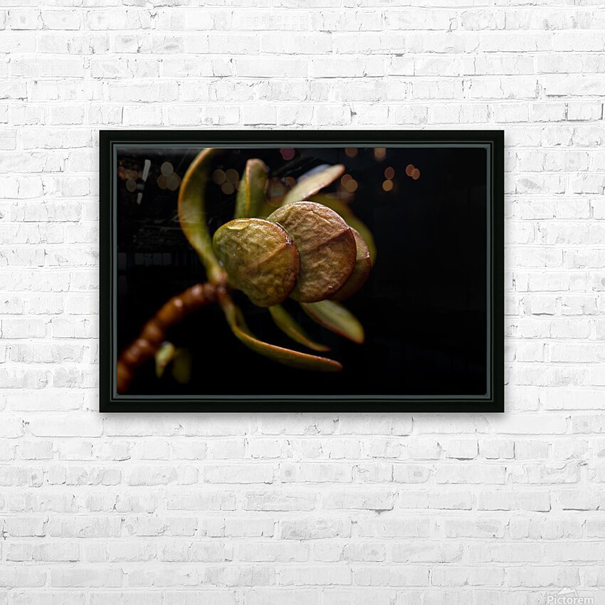 Life HD Sublimation Metal print with Decorating Float Frame (BOX)