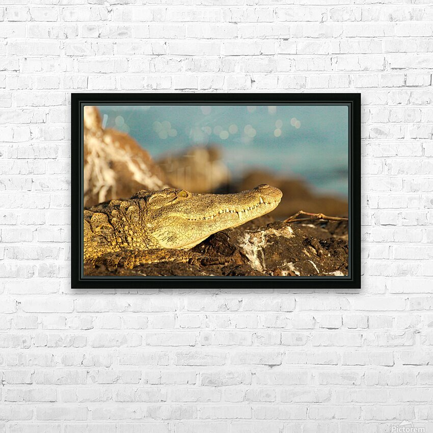 AdriaanPrinsloo 8074 HD Sublimation Metal print with Decorating Float Frame (BOX)