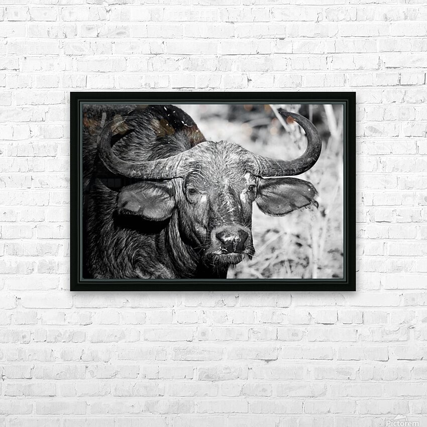 AdriaanPrinsloo 17077 HD Sublimation Metal print with Decorating Float Frame (BOX)