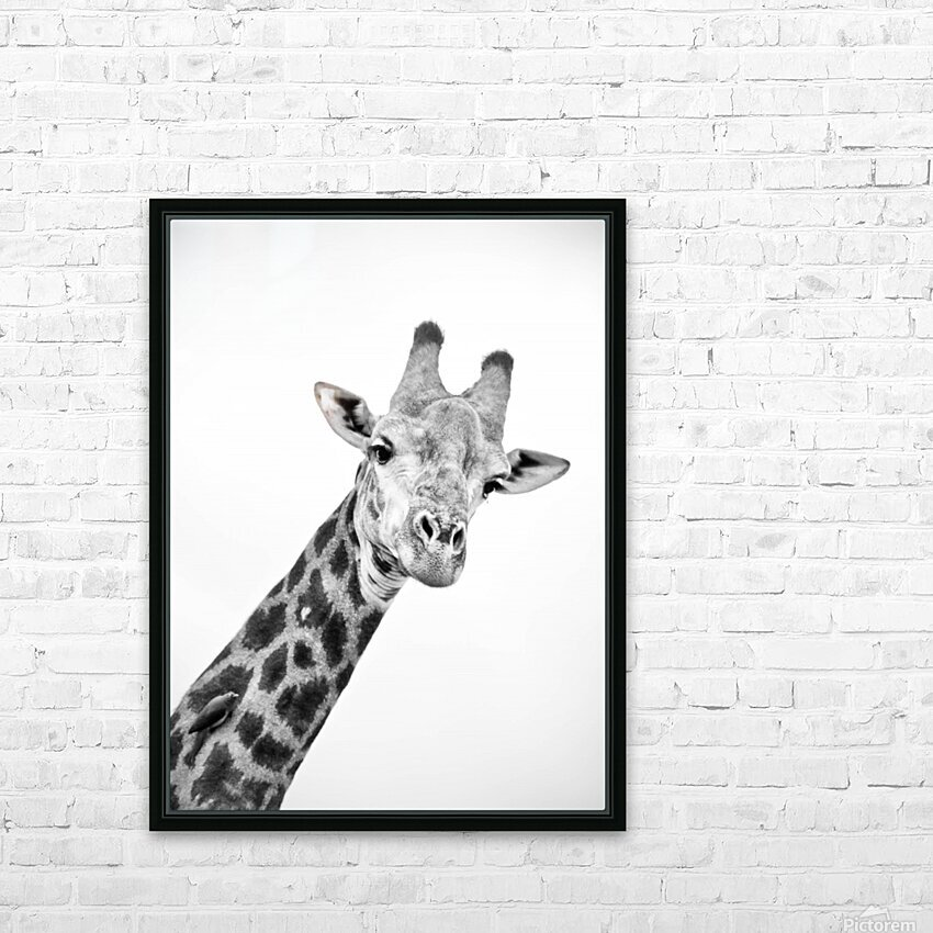 AdriaanPrinsloo 20089 HD Sublimation Metal print with Decorating Float Frame (BOX)