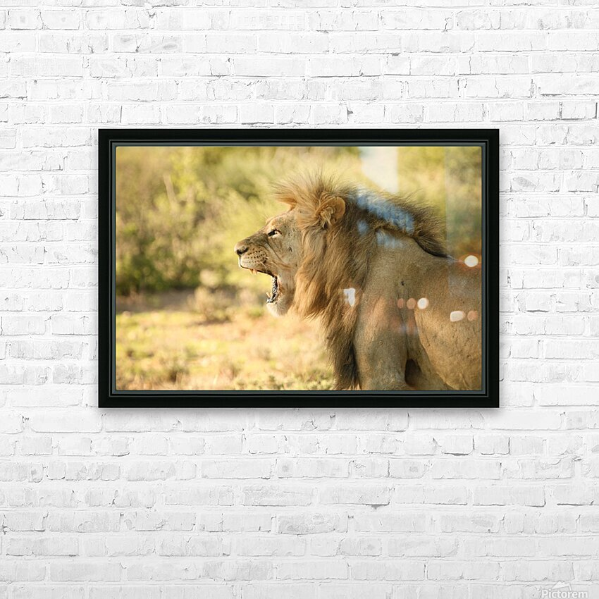 AdriaanPrinsloo 6942 HD Sublimation Metal print with Decorating Float Frame (BOX)