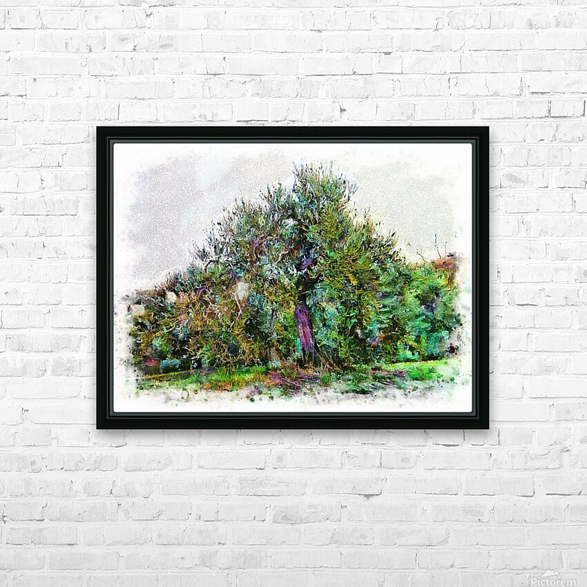Cascading Olive Tree HD Sublimation Metal print with Decorating Float Frame (BOX)