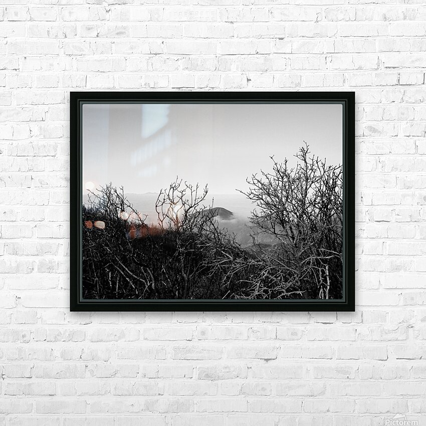 California Clouds through Mountain Brush in B&W HD Sublimation Metal print with Decorating Float Frame (BOX)