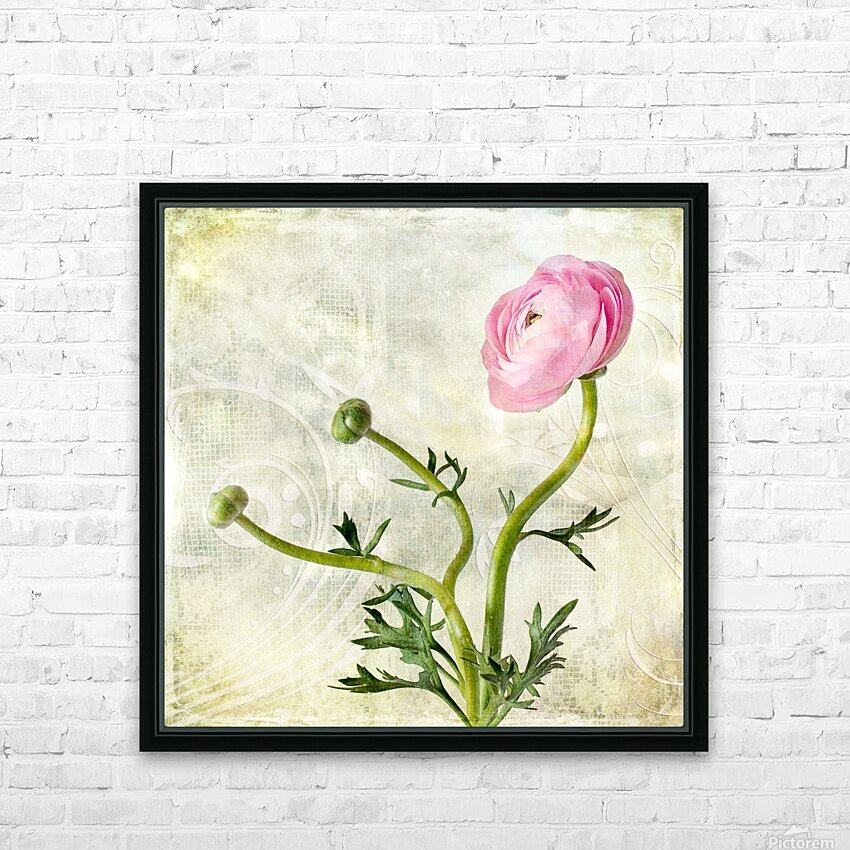 Pink buttercup HD Sublimation Metal print with Decorating Float Frame (BOX)