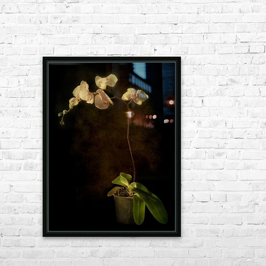 Orchid HD Sublimation Metal print with Decorating Float Frame (BOX)