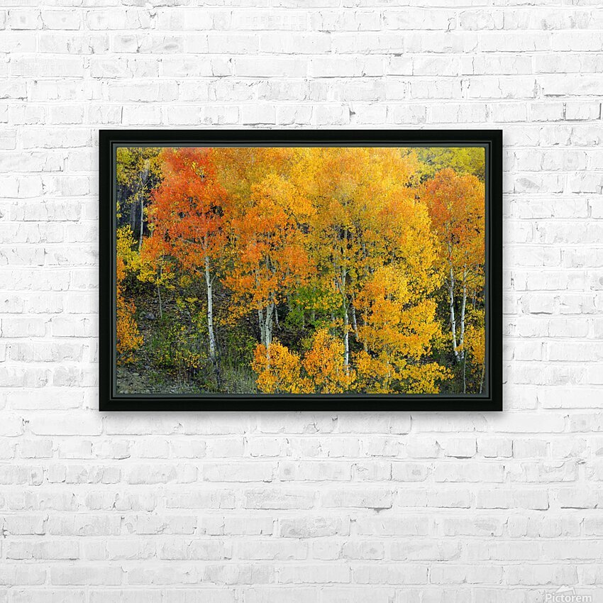 AUTUMN SERENITY  HD Sublimation Metal print with Decorating Float Frame (BOX)