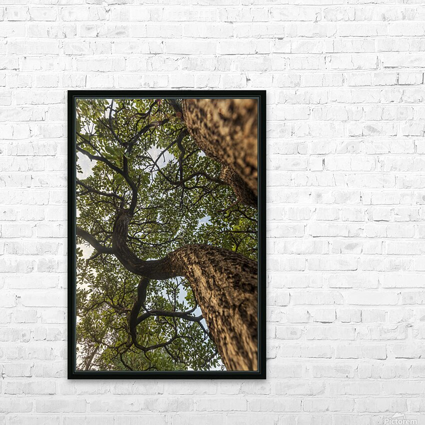 Resilience - Spiral Vertical HD Sublimation Metal print with Decorating Float Frame (BOX)