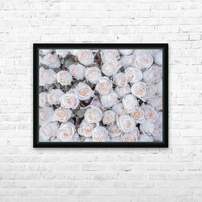 Full frame of Roses HD Sublimation Metal print with Decorating Float Frame (BOX)