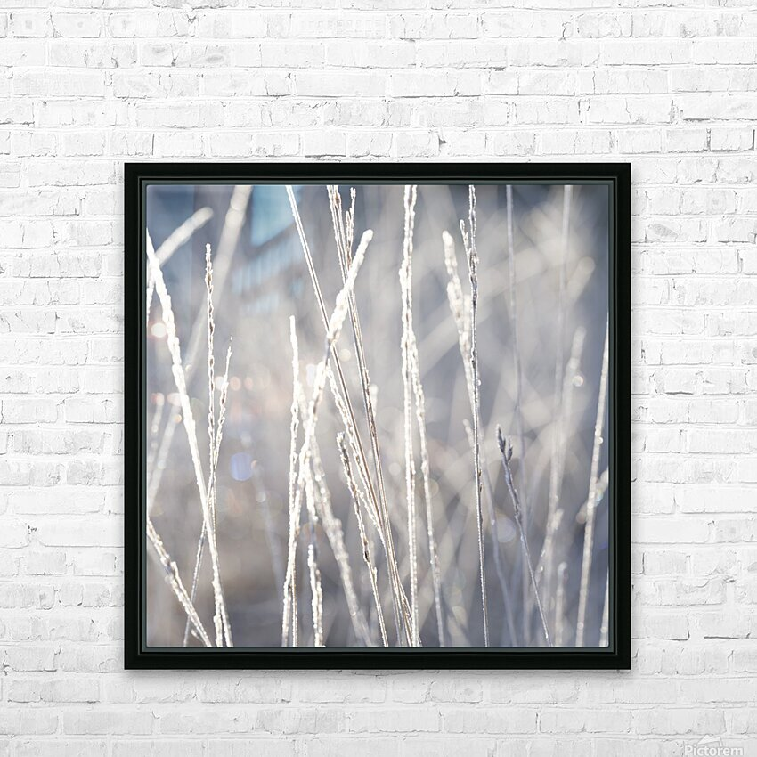 Frost on Grass HD Sublimation Metal print with Decorating Float Frame (BOX)