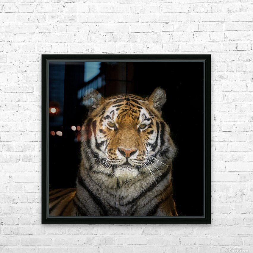 Tiger face HD Sublimation Metal print with Decorating Float Frame (BOX)