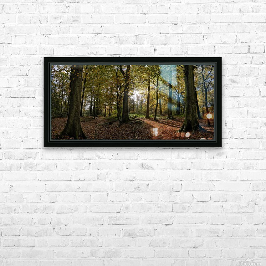 Autumn Forest HD Sublimation Metal print with Decorating Float Frame (BOX)