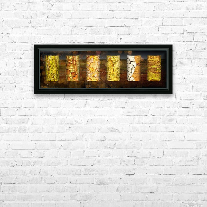 tree bark live HD Sublimation Metal print with Decorating Float Frame (BOX)