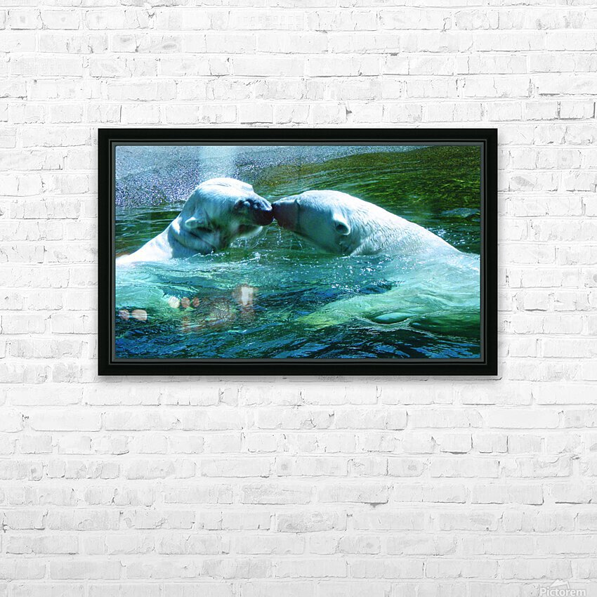 Kiss Me Polar Bears HD Sublimation Metal print with Decorating Float Frame (BOX)
