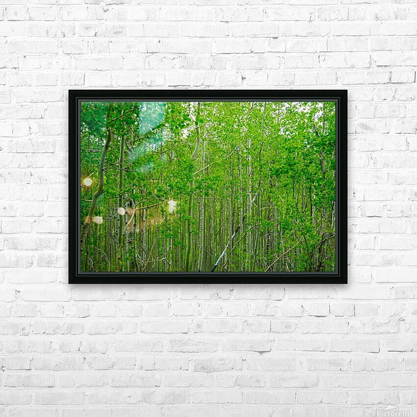 New Growth HD Sublimation Metal print with Decorating Float Frame (BOX)