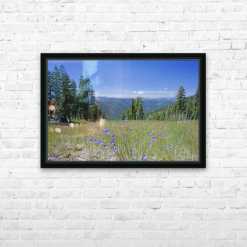 Sierra Nevada in Spring 7 of 8 HD Sublimation Metal print with Decorating Float Frame (BOX)