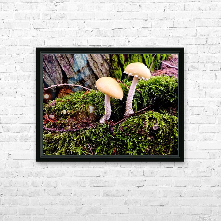 Tiny World 6 of 8 HD Sublimation Metal print with Decorating Float Frame (BOX)