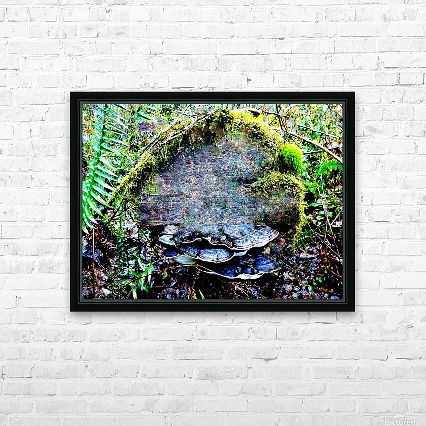 Tiny World 7 of 8 HD Sublimation Metal print with Decorating Float Frame (BOX)
