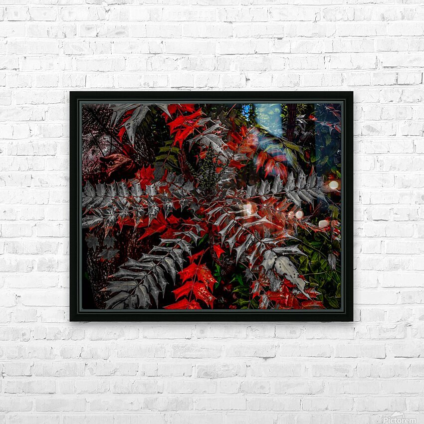 Holly Explosion HD Sublimation Metal print with Decorating Float Frame (BOX)
