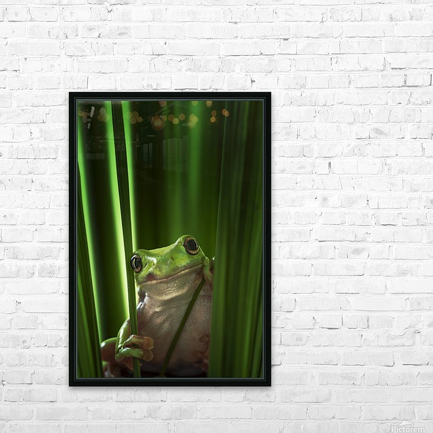 Green Frog HD Sublimation Metal print with Decorating Float Frame (BOX)