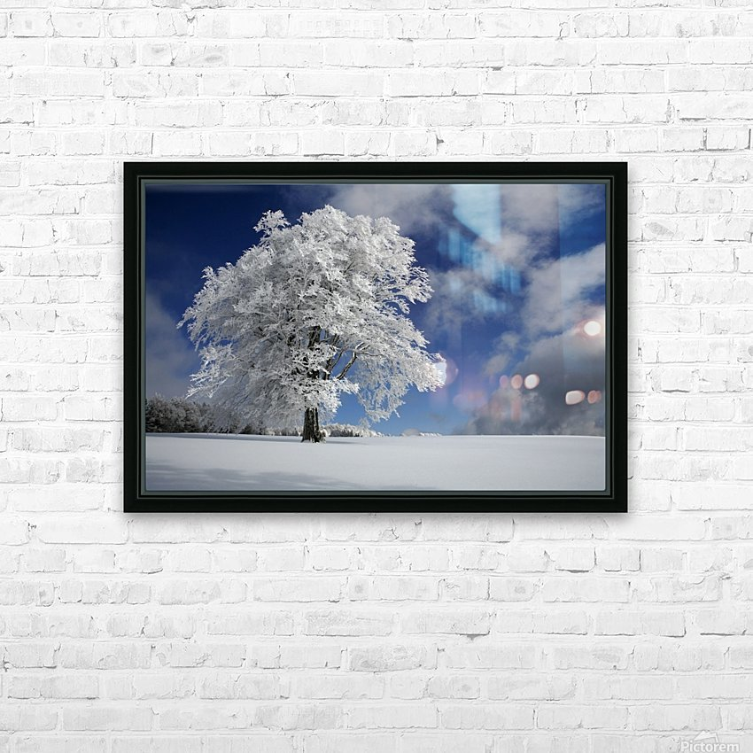 White Windbuche in Black Forest HD Sublimation Metal print with Decorating Float Frame (BOX)