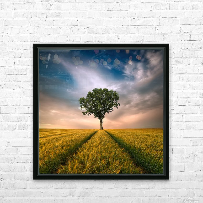 One by Piotr Krol (Bax) HD Sublimation Metal print with Decorating Float Frame (BOX)