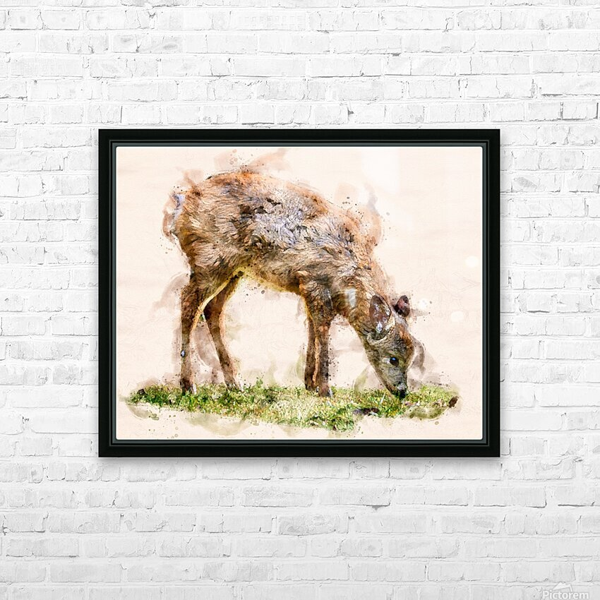 White Tail Deer HD Sublimation Metal print with Decorating Float Frame (BOX)