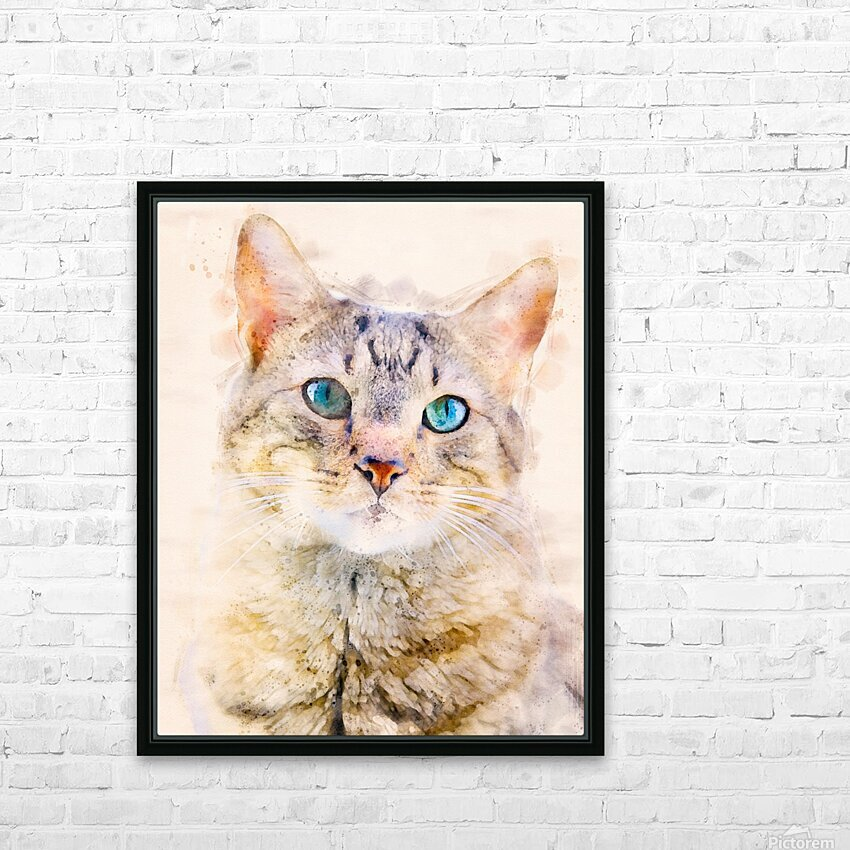 Dragon Li Hau cat HD Sublimation Metal print with Decorating Float Frame (BOX)